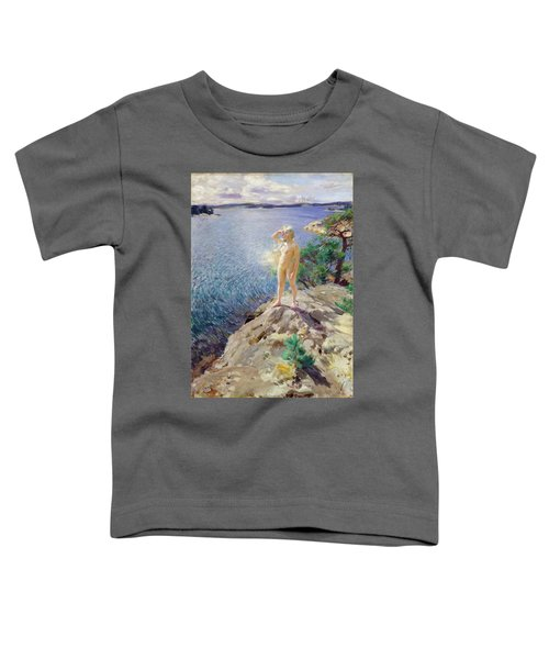 In The Skerries Toddler T-Shirt