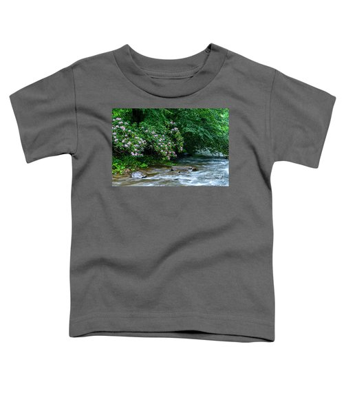 Summer Along Birch River Toddler T-Shirt