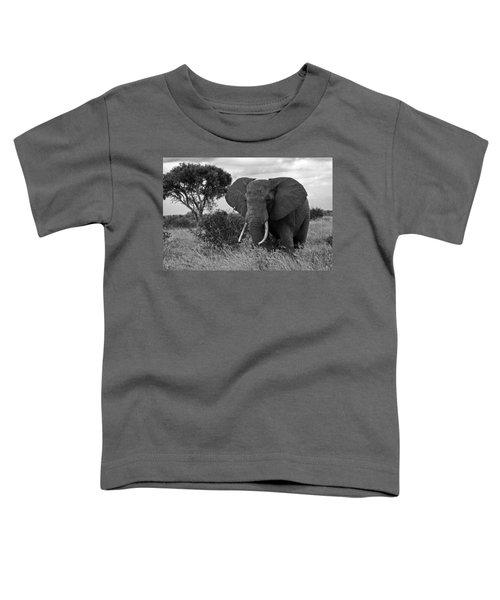 The Old Bull Toddler T-Shirt