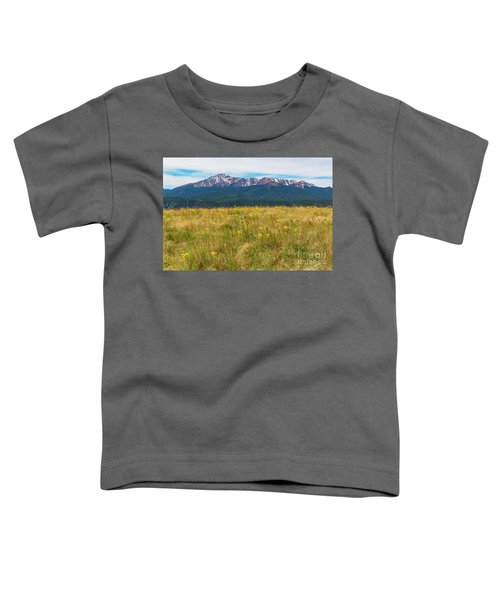 Wildflowers And Pikes Peak Toddler T-Shirt