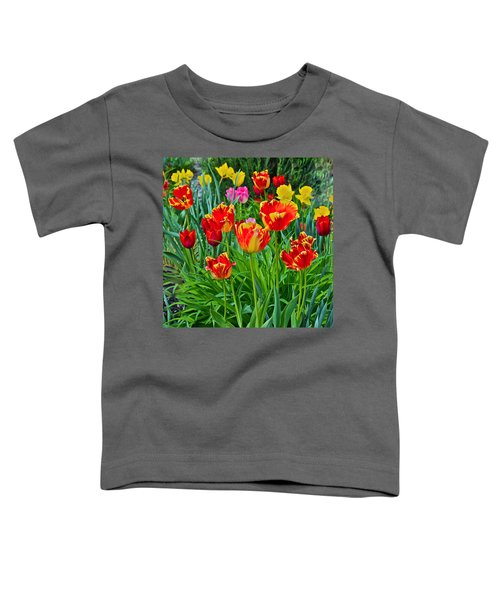 2015 Acewood Tulips 6 Toddler T-Shirt
