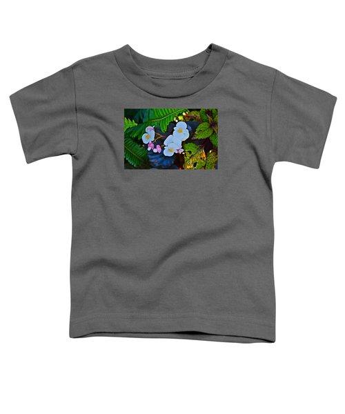 2015 Early September At The Garden Begonias Toddler T-Shirt