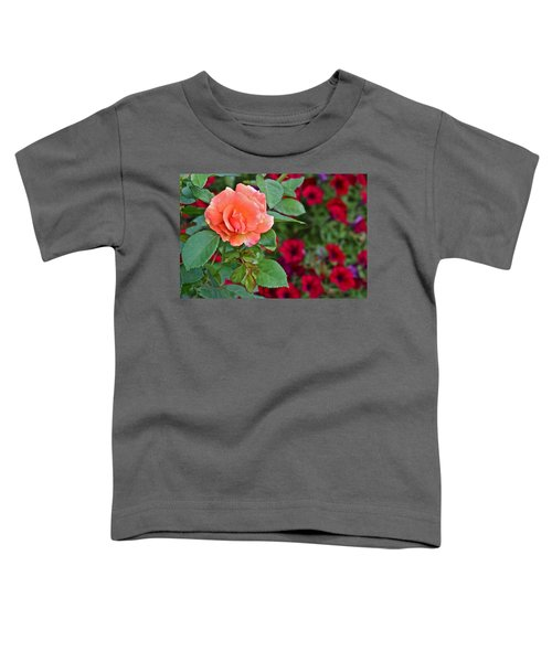 2015 Fall Equinox At The Garden Sunset Rose And Petunias Toddler T-Shirt