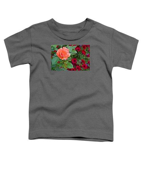 2015 Fall Equinox At The Garden Sunset Rose And Petunias Toddler T-Shirt