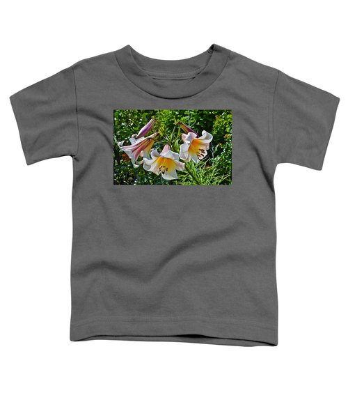 2015 Summer At The Garden Lilies In The Rose Garden 1 Toddler T-Shirt