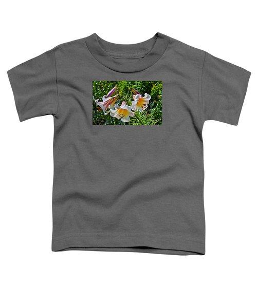 2015 Summer At The Garden Lilies In The Rose Garden 1 Toddler T-Shirt