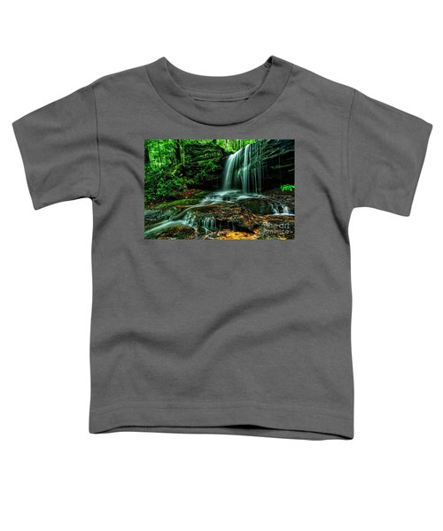 West Virginia Waterfall Toddler T-Shirt