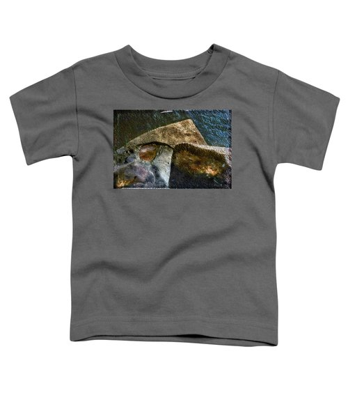 Stone Sharkhead Toddler T-Shirt