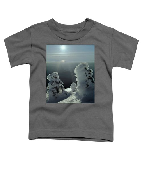 2m4415 A Ice Covered Trees Over Puget Sound Toddler T-Shirt