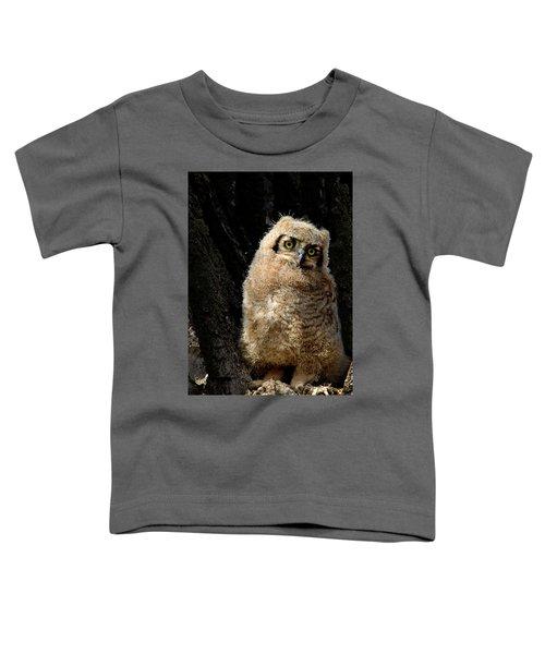 Great Horned Owlet Toddler T-Shirt