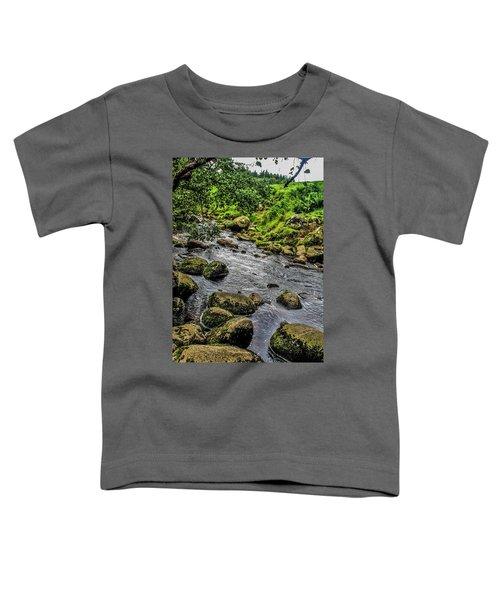 Linhope Toddler T-Shirt