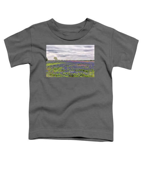 Texas Wildflowers 2 Toddler T-Shirt