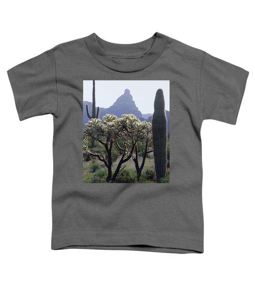 313737 Montezumas Head Toddler T-Shirt