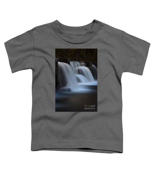 Natural Dam Toddler T-Shirt