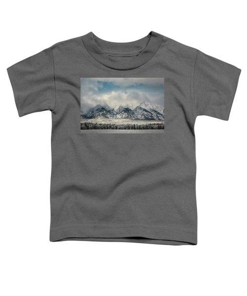 Winter Beauty Toddler T-Shirt