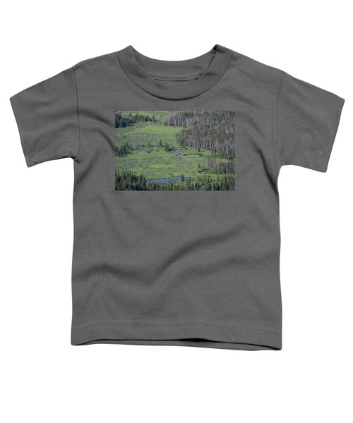 Scenery Rocky Mountain Np Co Toddler T-Shirt