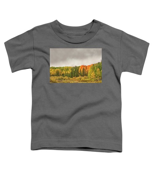 Colorado Fall Foliage 1 Toddler T-Shirt