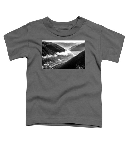 Grandview New River Gorge Toddler T-Shirt