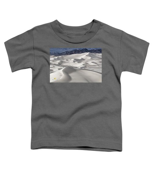 Dumont Dunes 8 Toddler T-Shirt