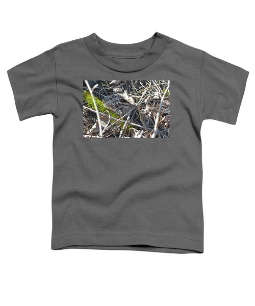 8 Days Old American Woodcock Chick Toddler T-Shirt
