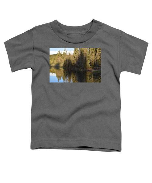 Shadow Reflection Kiddie Pond Divide Co Toddler T-Shirt