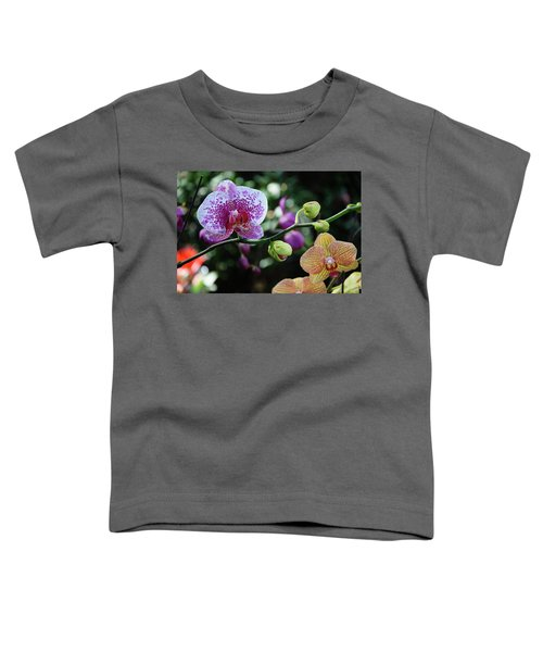 Butterfly Orchid Flowers Toddler T-Shirt