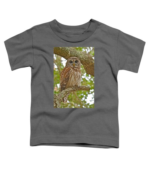 A Barred Owl Toddler T-Shirt