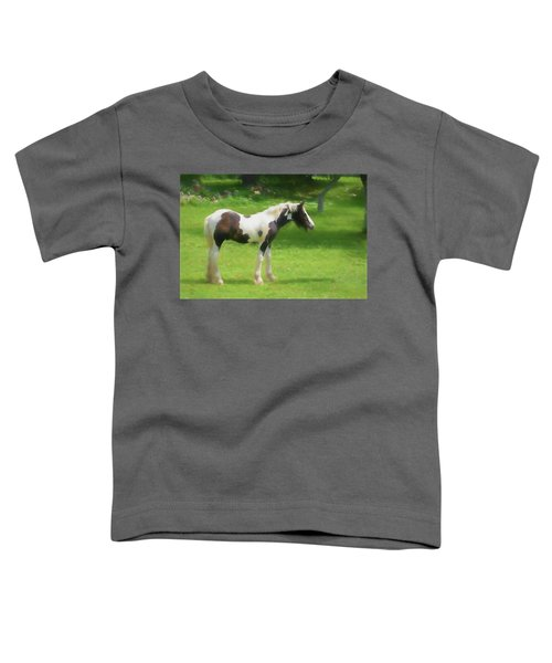 A Beautiful Young Gypsy Vanner Standing In The Pasture Toddler T-Shirt