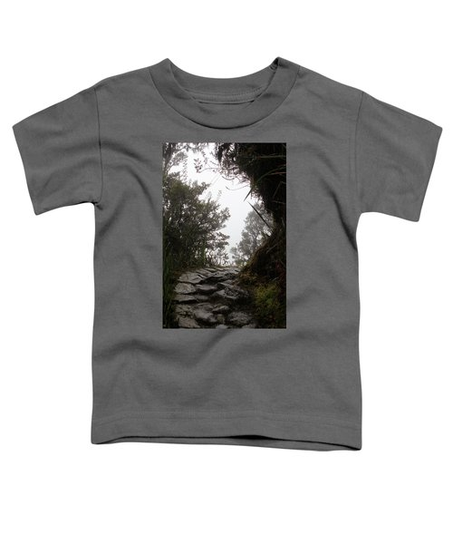 A Bend In The Path Toddler T-Shirt
