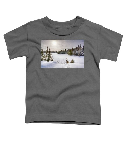 A Cold Algonquin Winters Days  Toddler T-Shirt