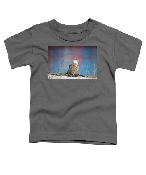 A Colorful Snowy Owl Toddler T-Shirt