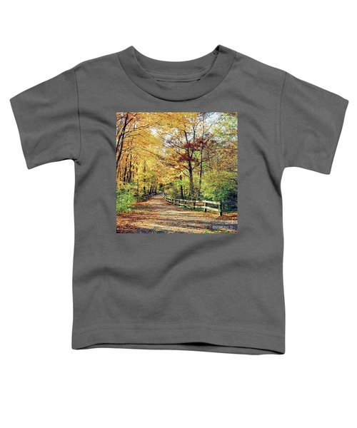 A Colorful Walk Toddler T-Shirt