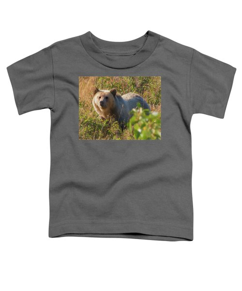 A  Female Grizzly Bear Looking Alertly At The Camera. Toddler T-Shirt