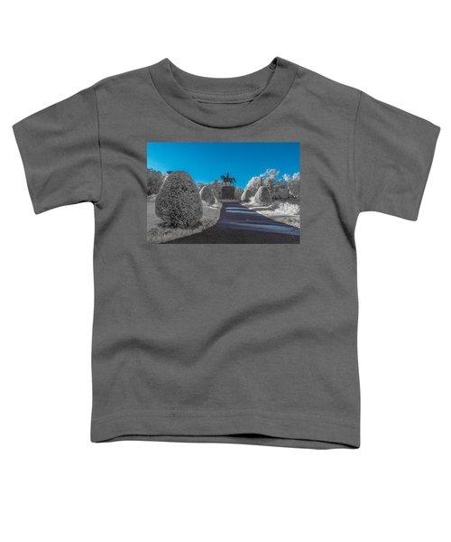 A Frosted Boston Public Garden Toddler T-Shirt