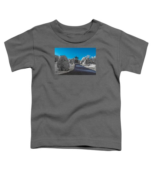 A Frosted Boston Public Garden Toddler T-Shirt