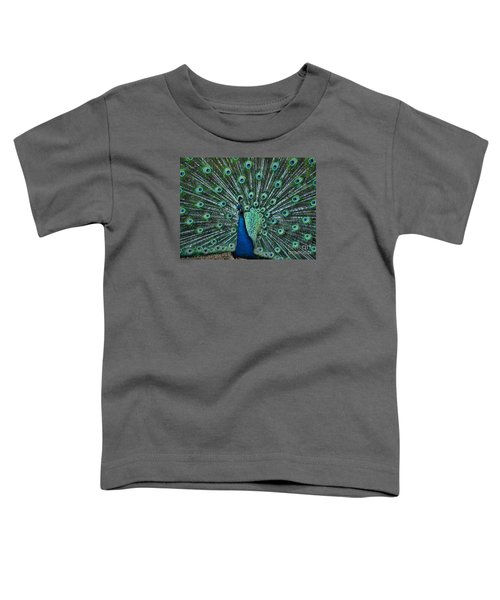 A Glory To The Eyes Toddler T-Shirt