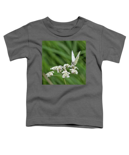 A Green-veined White (pieris Napi) Toddler T-Shirt