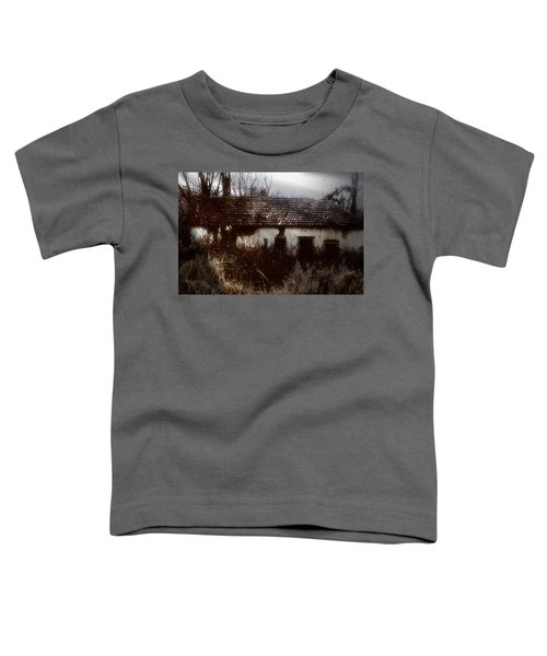 A House In The Woods Toddler T-Shirt