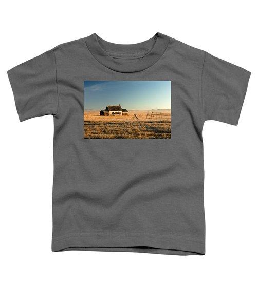 A Long, Long Time Ago Toddler T-Shirt