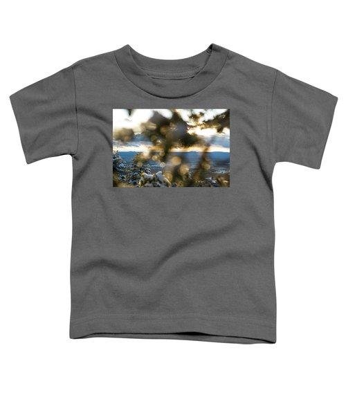 A Peek At Taos Mesa Toddler T-Shirt