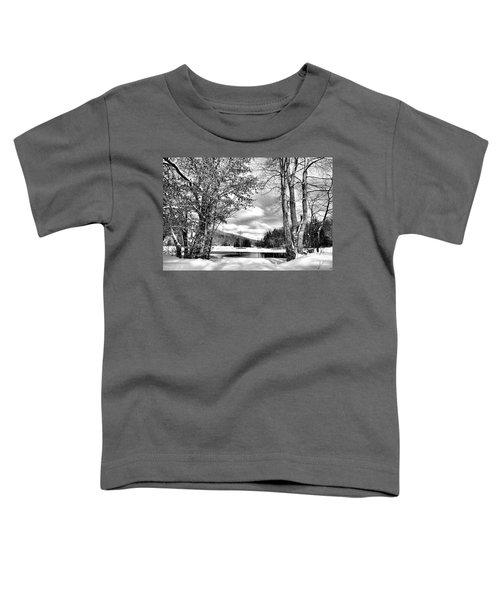 A Peek At Winter Toddler T-Shirt