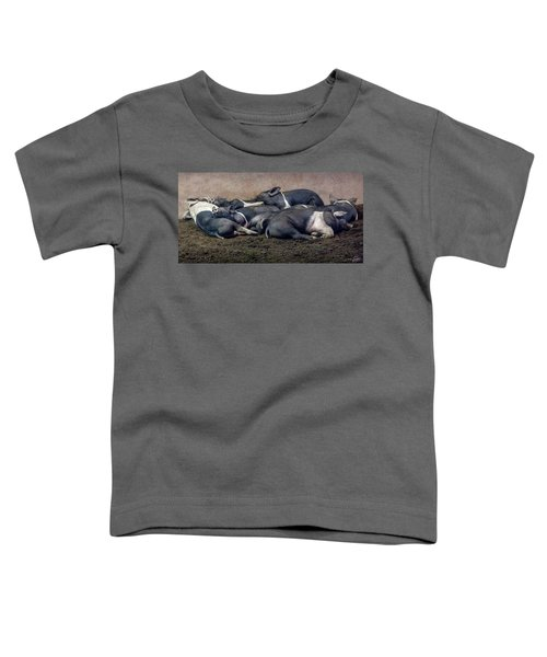 A Pile Of Pampered Piglets Toddler T-Shirt