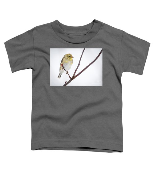 A Sign Of Spring Toddler T-Shirt by Ricky L Jones