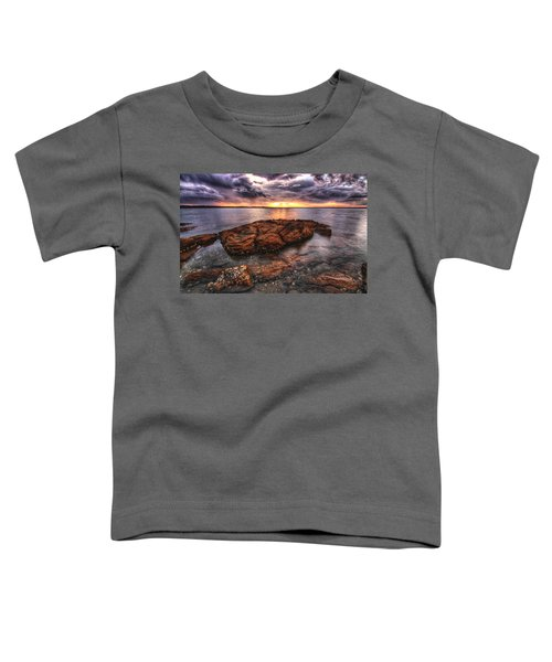 A Storm Is Brewing Toddler T-Shirt