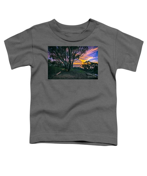 A Swinging Sunset From The Secret Swings Of La Jolla Toddler T-Shirt