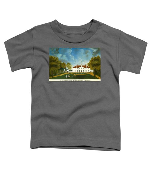 A View Of Mount Vernon Toddler T-Shirt
