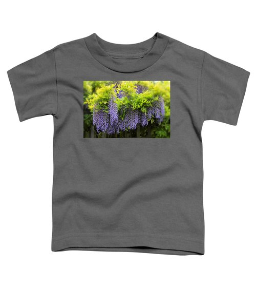 A Wealth Of Wisteria Toddler T-Shirt