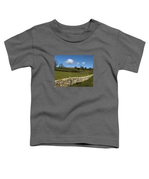 A Winter Wall Toddler T-Shirt