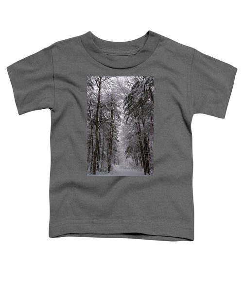 A Winters Path Toddler T-Shirt