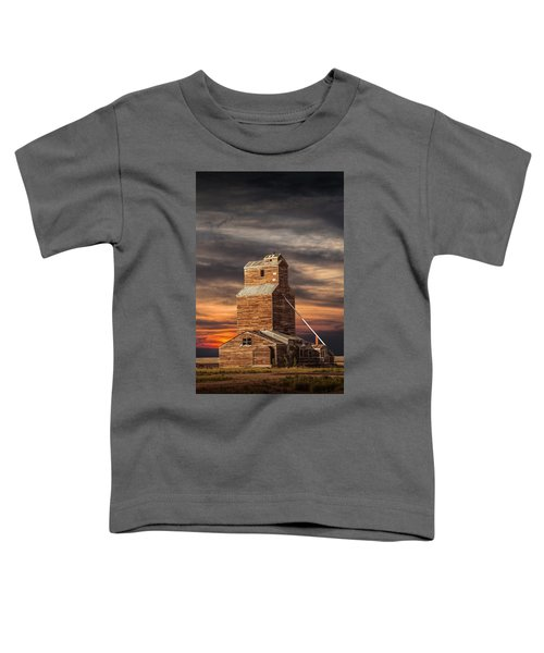 Abandoned Grain Elevator On The Prairie Toddler T-Shirt
